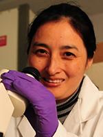 Qiu Xia Li, PhD